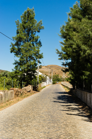 portugese: Typical Portugese farmhouses, making walking in the countryside very pleasant.