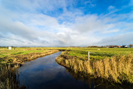 Beautiful Dutch landscape near Haarlem and Spaarndam Stock Photo