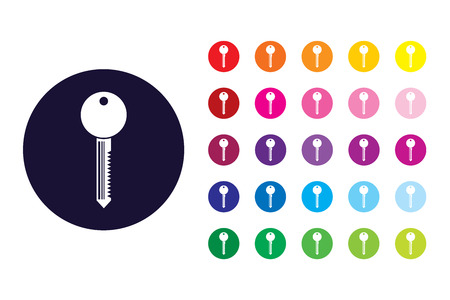 key sign icon. key color symbol. Illustration