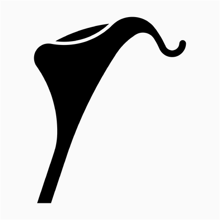 Glyph calla lily flower pixel perfect vector icon