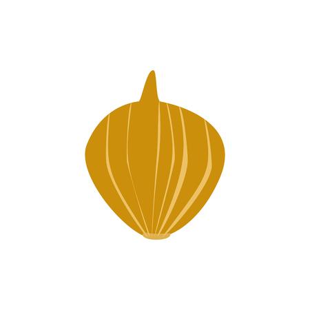 Ripe Golden Fresh Onion on White Background, Organic Food,