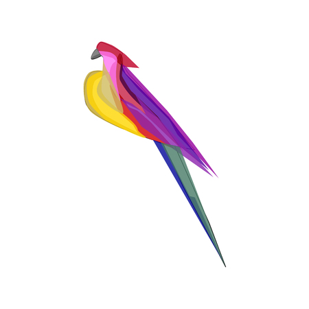 Colorful tropical abstract parrot on white background Vector Illustration