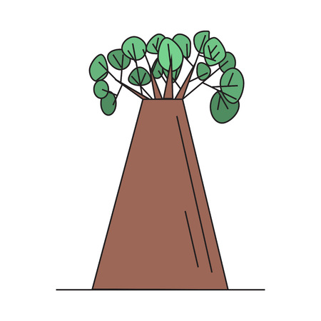 African baobab tree on white background isolated vector illustration