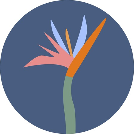Icon of colorful blossom of strelizia on dark blue background cartoon style vector illustration 矢量图像