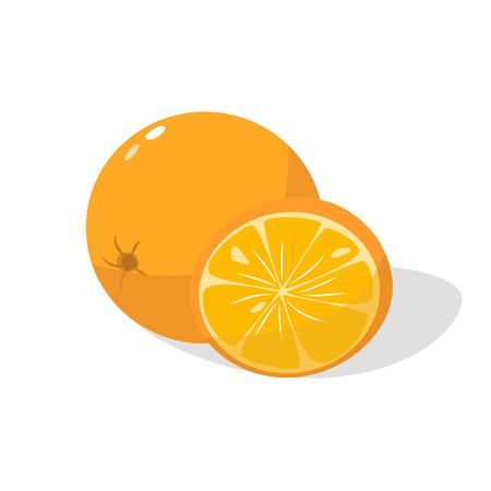 Fresh ripe juicy oranges isolated on white background vector illustration