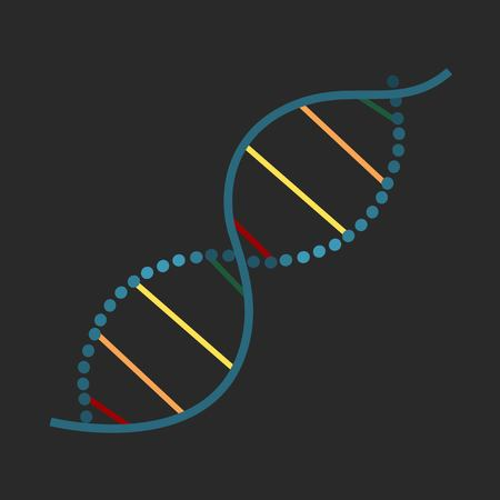 Colorful spiral chain of dna isolated on dark background vector illustration
