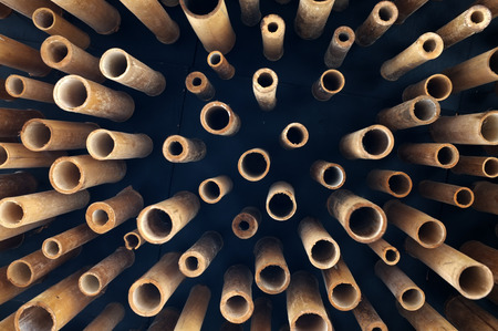 thailand bamboo: Cutting bamboo, cross section of bamboo