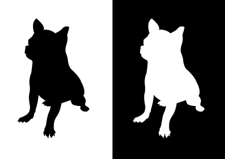 attentive: Chihuahua dog breed - silhouette vector