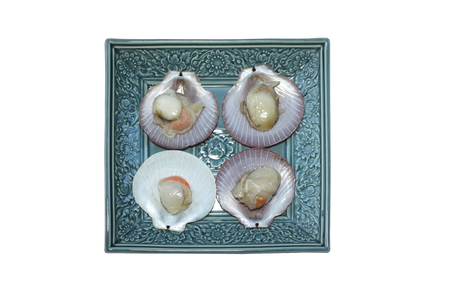 saltwater pearl: Raw fresh scallop