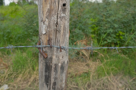 barb wire isolated: Rusted Barbed Wire, Barbed Wire Fence