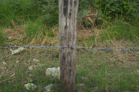 wire fence: Rusted Barbed Wire, Barbed Wire Fence