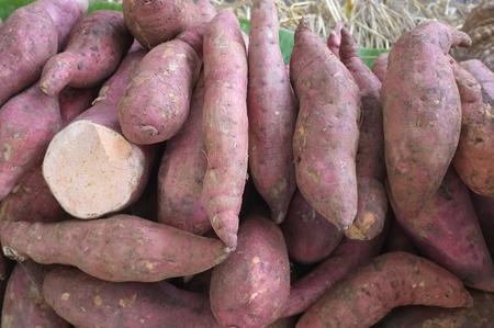 ingredient: Sweet potato ,  thai ingredient