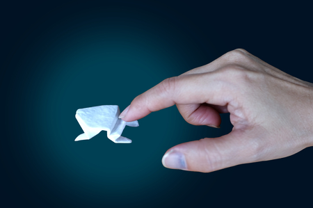 White origami frog on black background  ,Concept  Incremental Growth , Business , Giant Leap Growth  , target Stock Photo