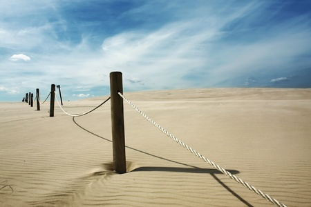 sandbank: Landscape of Polish dunes in Leba.