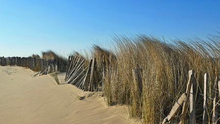 Sea dunes, Nothsea, Sand Beach Holland Flandern Stock Photo