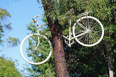White cycliste bloqué dans un grand arbre Banque d'images - 7053011