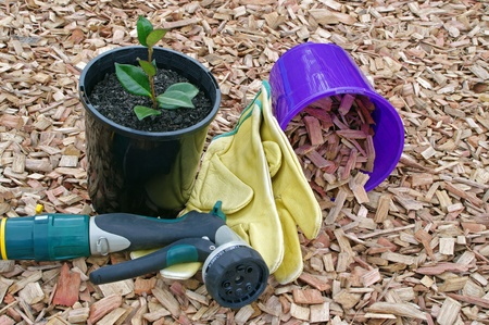 Mulch potted plant and garden accessories