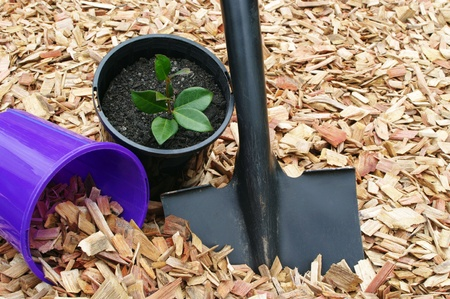 mulch black shovel and potted plant