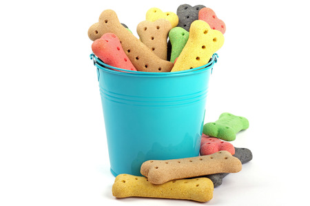 colored dog bones and a blue bucket Stock Photo