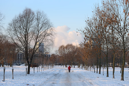 Alley and view of the Victory square in winter Park at Pulkovo in St. Petersburg Stock Photo