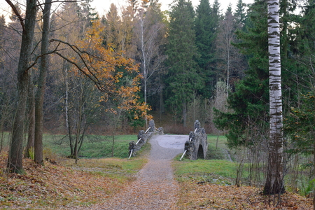 leningradskaya: Footpath and bridge over the pond in the Park in late autumn at sunset. Pavlovsk in late autumn
