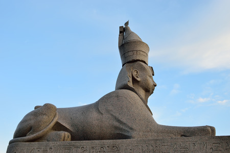 esfinge: Stone Sphinx on the University embankment in St. Petersburg Foto de archivo