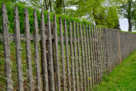 Old wooden fence covered with thick moss