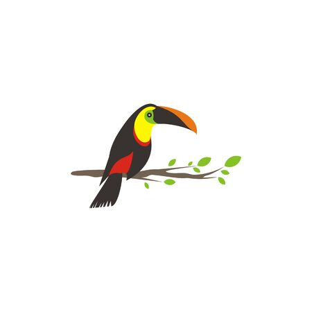 Vector bird of toucan is on a wooden branch to prepare to fly