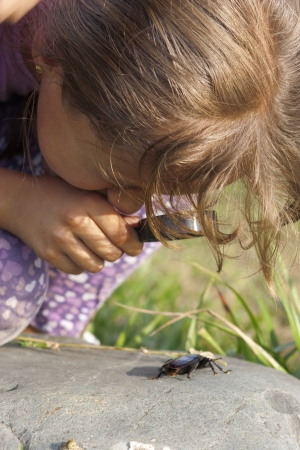 Curious Little Girl Looking At Beetle Through Magnifying Glass Outdoor Stock Photo - 17484840