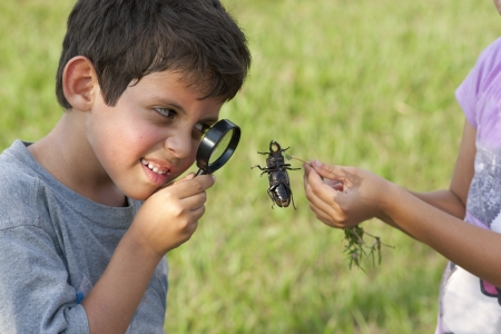 Curious Child Looking At Beetle Through Magnifying Glass Outdoor Stock Photo