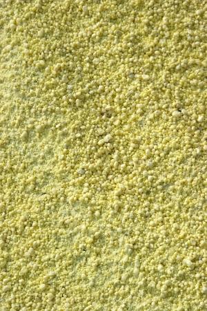 Portrait of Background of Sulphur Texture