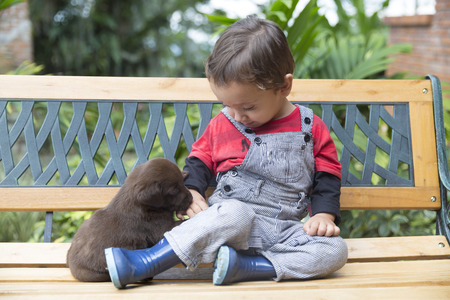 Portrait of Adorable Baby And His Dog At Home photo