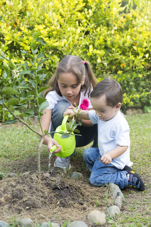 Happy Children Planting Garden In The Park photo