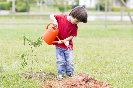 regando plantas: Retrato de hermosas plantas de riego del muchacho al aire libre Foto de archivo