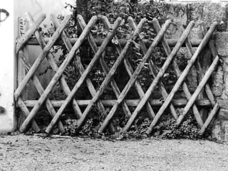 wooden fence. Reklamní fotografie - 116636324