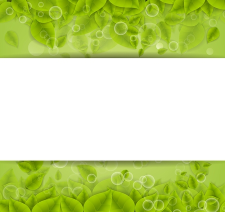 abstract green background: Realistic Leaves Background with  Space