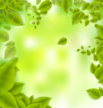 freshness: Realistic Leaves Background with  Space