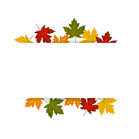 fall leaf: Colorful autumn leaves on a background Vector
