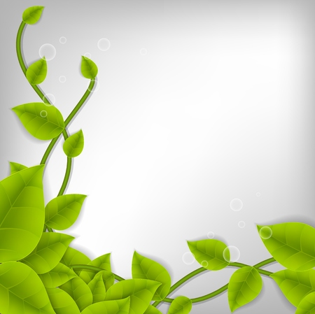 Realistic Leaf Background with Space