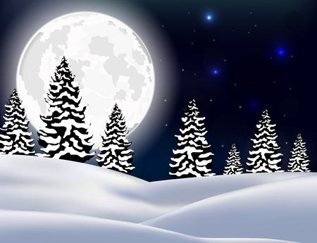 winter forest: Winter Forest Landscape Christmas Background Stock Photo