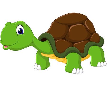 turtle isolated: Cute cartoon turtle