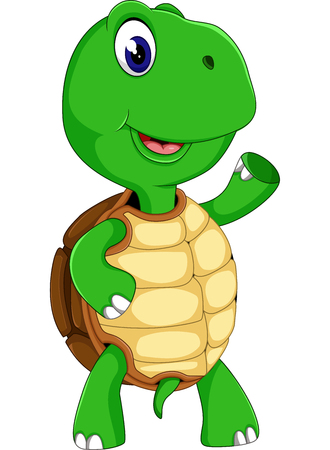 green sea turtle: Cute cartoon turtle of illustration