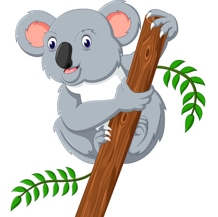 Cute koala holding tree