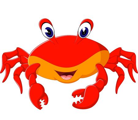 cangrejo caricatura: ilustraci�n de dibujos animados lindo del cangrejo Vectores