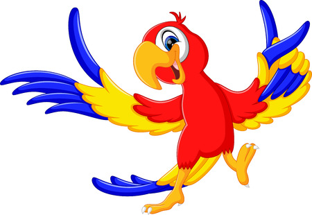 cartoon parrot: illustration of Cartoon parrot