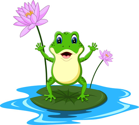 lily pads: funny Green frog cartoon
