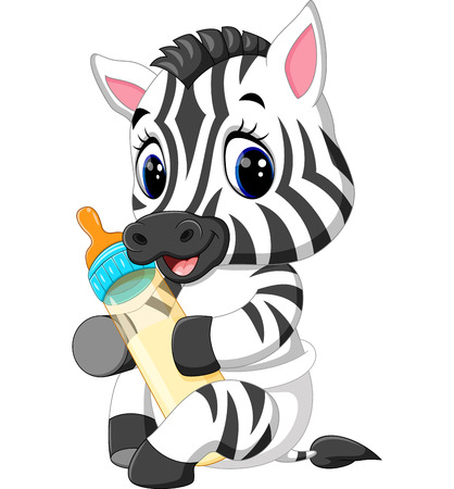 illustration of cute baby zebra