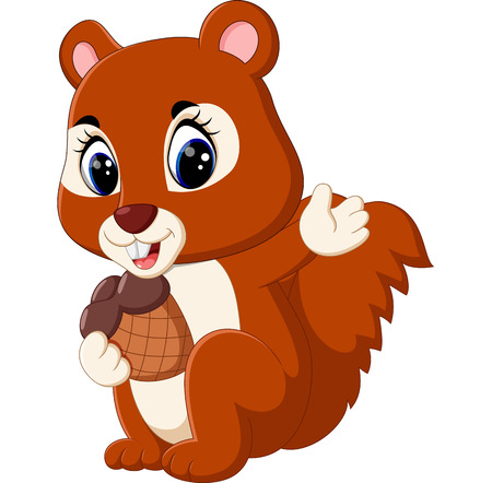 isolated squirrel: illustration of Cute squirrel cartoon