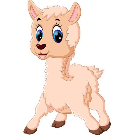 Cute baby sheep cartoon Stock Photo
