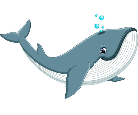 gush: illustration of Cute whale cartoon